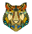 Tiger head sketch vector image