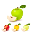 Colorful Apples Isolated Set vector image