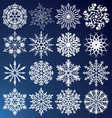 16 snowflakes vector image