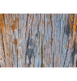 Pattern of log vector image