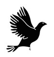 dove bird symbol vector image