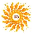 Orange paint splash circle on white background vector image