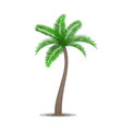 Tropical palm tree symbol vector image