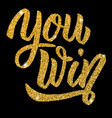 you win hand drawn lettering with gold effect vector image