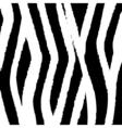 zebra fur design vector image vector image