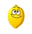 Fun cartoon lemon fruit vector image