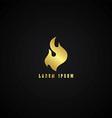 golden fire theme vector image