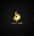 golden fire theme vector image