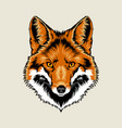 Red Fox Head vector image vector image