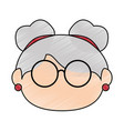old women face vector image