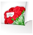 Elegant flowers design vector image