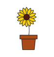 potted flower nature decoration ornament vector image