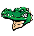 Crocodile head mascot vector image