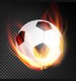football ball realistic football soccer vector image