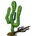 cactus doodle vector image