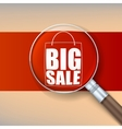 Magnifier selling banner vector image