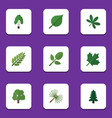 flat icon natural set of timber leaves rosemary vector image