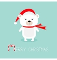 Cute white polar baby bear in santa claus hat and vector image