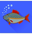 Fish With Red Fins vector image vector image