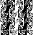 Seamless pattern of zebras vector image