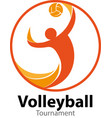 volleyball symbol or icon vector image vector image
