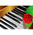 piano and rose vector image
