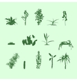 silhouettes plants vector image
