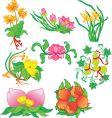 oriental flowers vector image