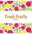 flat elements for design Fruits berries vector image