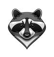 Cartoon wild raccoon animal mascot vector image