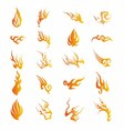 Set of Graphic Design Elements - Fire Floral vector image