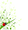 Spring background with ladybug vector image