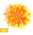 Orange paint splash on watercolor vector image