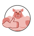 Boar thumbs up well and winks Pig Signs all right vector image