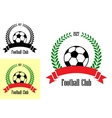 Football club emblems vector image