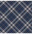 Blue diagonal plaid seamless fabric texture vector image