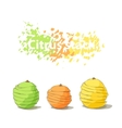 Stack of citrus sliced fruits vector image