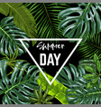 triangle banner with realistic tropical leaves vector image