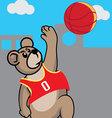 Basketball Bear vector image