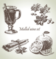 Set of mulled wine fruit and spices hand drawn il vector image