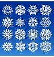 Big Snowflakes set for winter and christmas theme vector image vector image