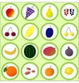 Flat fruits and berries vector image