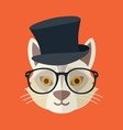 Hipster cat resize vector image