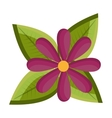 purple flower and green tree leaves graphic vector image