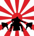 sumo fighting vector image