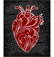 Anatomical floral human heart vector image