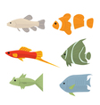 Collection of tropical fish vector image
