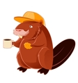 Beaver and the cup of coffee vector image