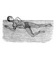 Sidestroke vintage engraved vector image