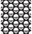 skull pattern 2 vector image